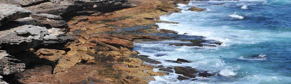 Southern Tide Property Management